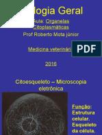3 26.08.16 Organelas Citoplasmáticas