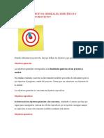 Ind011-Qué Son Los Objetivos Generales - Diseño Del Esquema Inicial