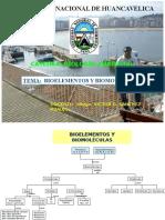 2. Biolementos y Biomoleculas