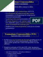 420-2014-02-24-03 Traumatismos ppt