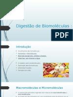 Digestão de Biomoléculas 9ºano