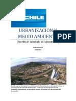 Urbanizacion y Medio Ambiente
