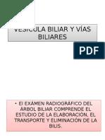 Vesícula Biliar y Vías Biliares [237673]