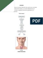 Bocio - resumen Anatomía Patológica.