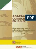 Adaptaciones Curriculares , Modelo España 2002