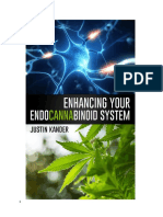 Enhancing Your Endocannabinoid System Final