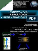 PATOLOGICA REPARACION, REGENERACION.pptx