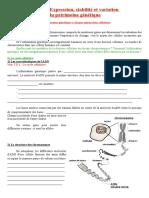 Ch1.1 La Mitose Cours Poly