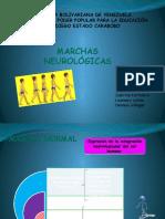 Marchas Neurologicas.pptx