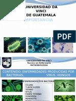 Enfermedades Mas Comunes Causadas Por Bacterias, Virus y Hongos- Microbiologia Arreglado