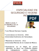 Marco Legal y Económico de La Seguridad