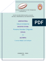 Actividad RSU II Unidad Salud Ambiental