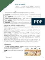 FUNCIONRELACION.pdf