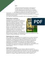 Historia Del Taladro