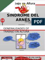 Síndrome Del Arnés