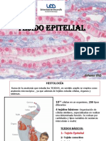 Clase_2._Tejido_epitelial.pdf