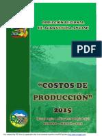 COSTOS DE PRODUCCION AGOSTO 2015 DRAA.pdf