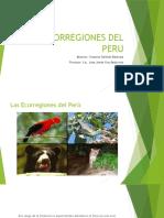 ECORREGIONES DEL PERU tarea 1.pptx