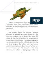 Morfología Anfibios
