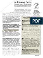 tree pruning guide.pdf