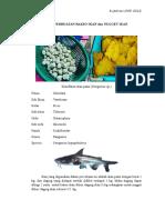 Cara Pembuatan Bakso Ikan