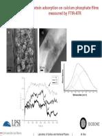 Protein adsorption on calcium phosphates