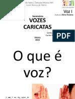 VOZES CARICATAS