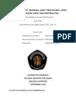 Audit Plan Audit Program Audit Procedures Audit Teknik Risiko Audit dan Materialitas
