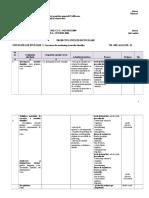 Comert_Tehnician in achizitii si contractari_Marketingul afacerii_XI_UI.doc