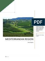 Meditarrenean Region