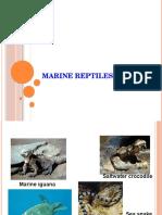 Biologi Laut - Marine Reptiles