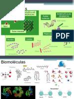 Biomol Orga e Inorg II