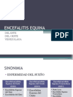 Encefalitis Equina