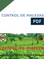 16. CONTROL QUÍMICO APLICADO..pptx