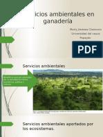 Servicios Ambientales en Ganadería