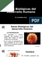 Semana04_S1 - Bases Biologicas del Desarrollo Humano.pptx