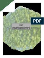 Virus y Otras Particulas Infectivas [