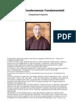 Chepadorje Rinpoche - Karma e Tendenze Fondamentali