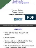 3 Layne Nelson Presentation.ppt