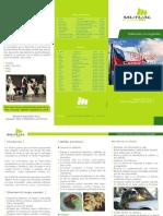 triptico fiestas patrias 107300137.pdf