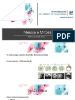 Meiose e Mitose.pdf