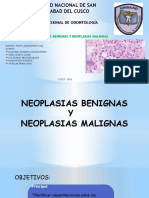 NEOPLASIAS-PPT-1 (2)