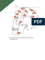 Mapa Puntos Craneales