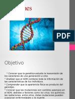 Genes (Biologia)