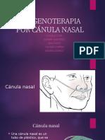 Canula Nasal
