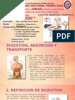Digestión, Absorción y Transporte.pptx
