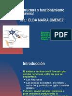 Estructura y Funcionamiento Neuronal DRA ELBA