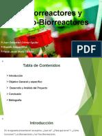 Fotobiorreactores