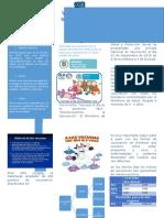 Actividad Diseño y Configuración de Páginas