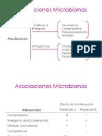 U7b_AsociacionesMicrobianas_20343